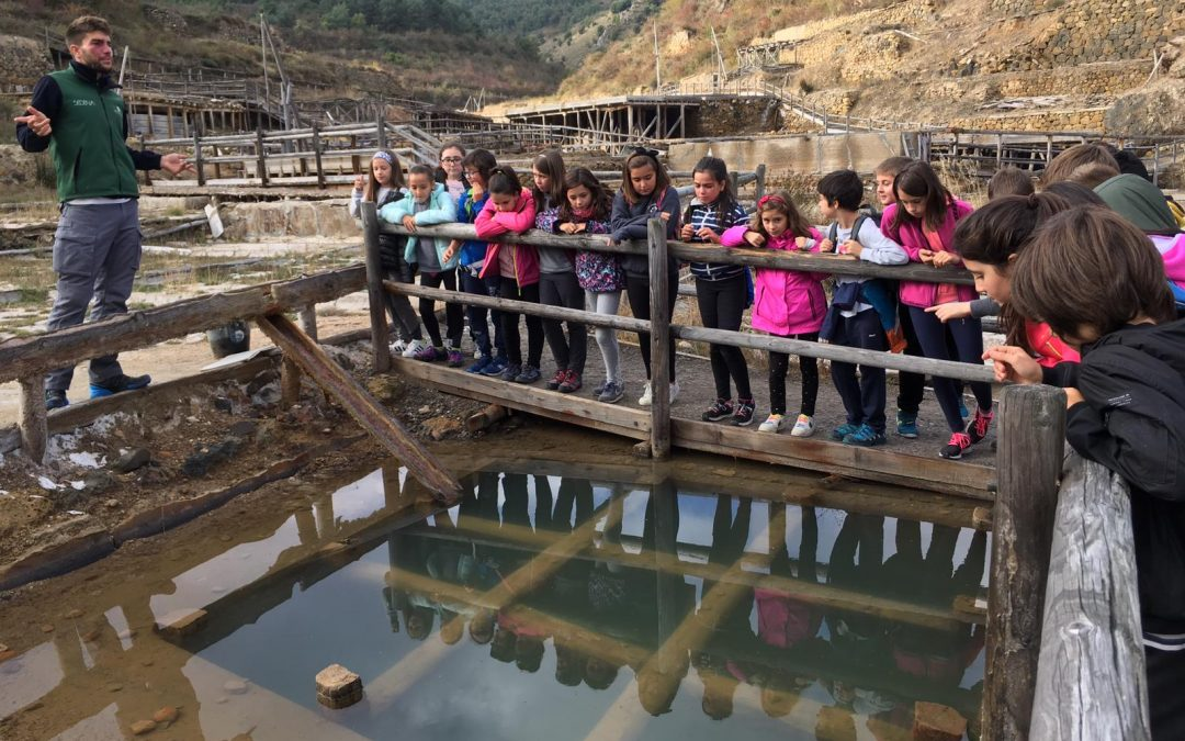 5º EPO| Descubriendo Salinas